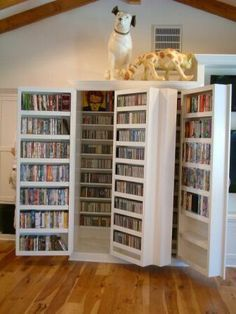 20 creative dvd storage ideas with c nv nt n l st l diy basement pinterest regal. Black Bedroom Furniture Sets. Home Design Ideas
