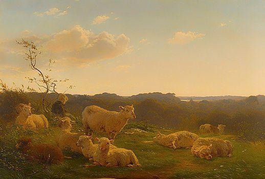 carlo dalgas - sheep on a hill near skarridso