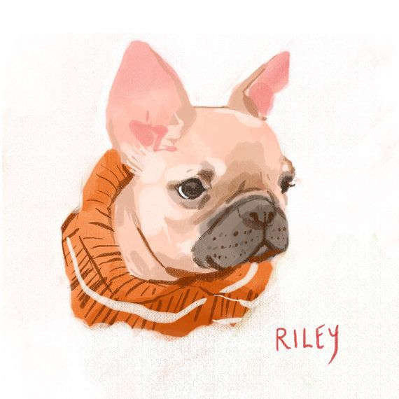 Custom Pet Portrait Illustration by kathrynselbert on Etsy