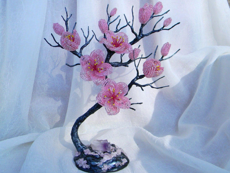 tree small sakura - Szukaj w Google