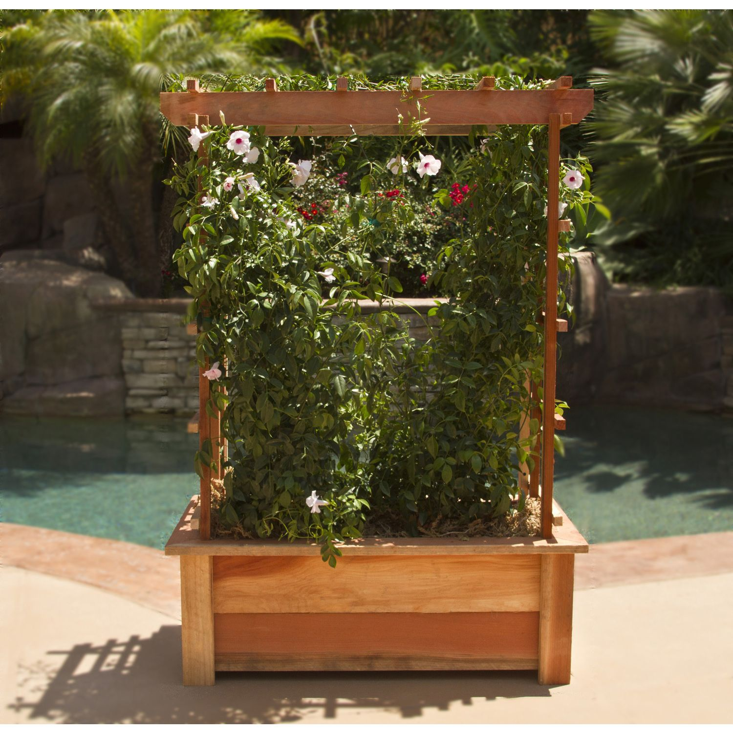 Large Redwood Planter Box For Tomatoes: Show Off Your Favorite Vine-based Plants Such As Ivy And