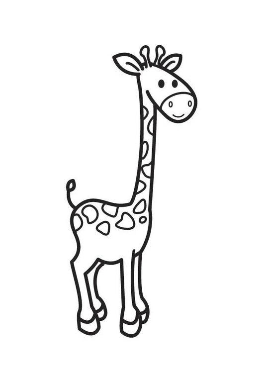 Kleurplaten Van Giraffen.Coloring Page Giraffe Giraffe Tekening Giraffe Knutselen