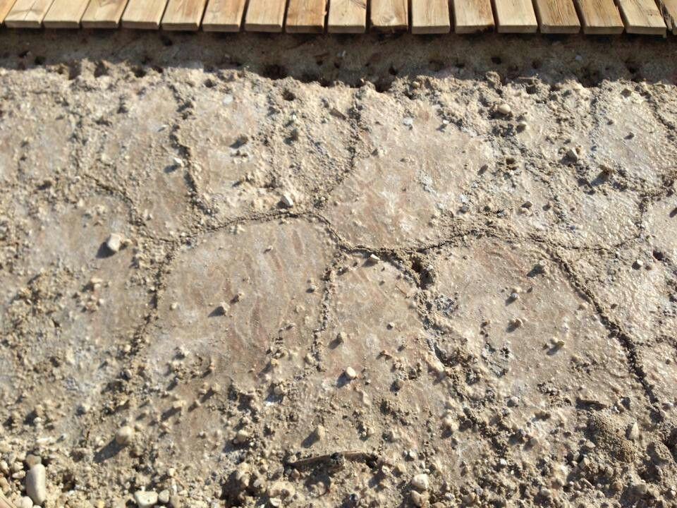 Pt. 8, Dead Sea photos.  Salty mud.  11/2014