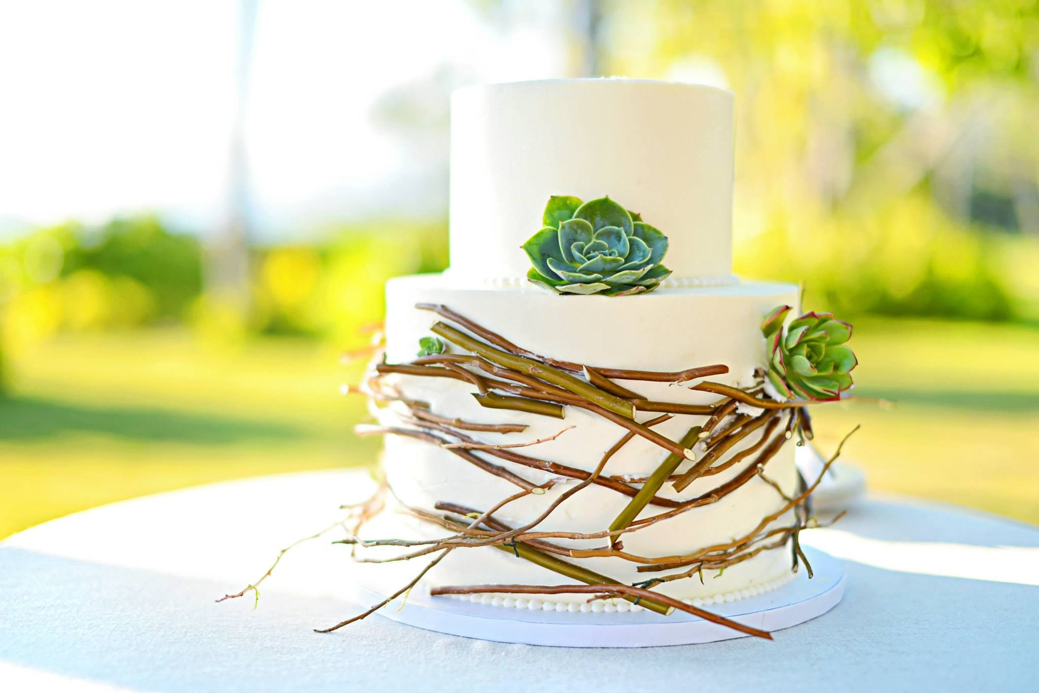 Rustic nature succulent twig cake. Photo by Stephen Ludwig ...