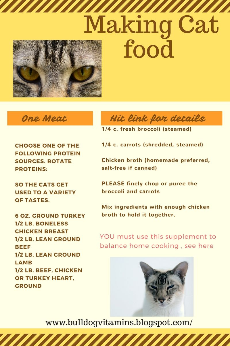 Picky cat food recipes new kitty training tips pinterest free making cat food recipe free cat food recipes healthy supplements for your cat forumfinder