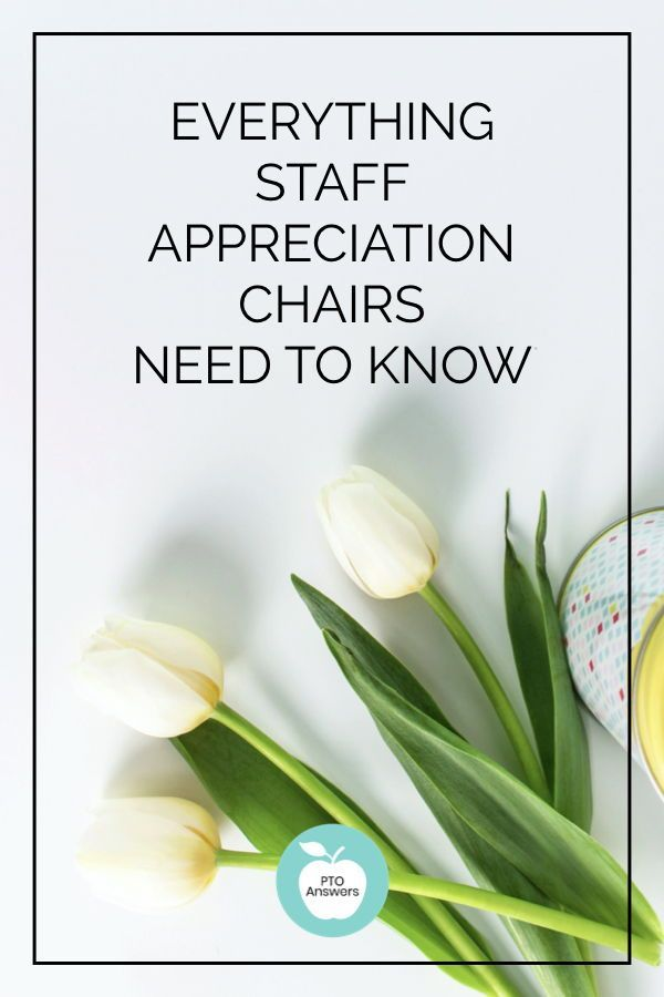 How to be the Best PTO Teacher Appreciation Chair #custodianappreciationgifts Everything you need to know about how to be the very best  Teacher Appreciation and Staff Appreciation chair for your PTO PTA!  Get a clear handle on your job duties and the best ways to get them done! #ptoanswers #pto #pta #ptoideas #ptaideas #ptotips #ptatips #staffappreciation #teacherappreciation #staffappreciationideas #teacherappreciationideas #custodianappreciationgifts