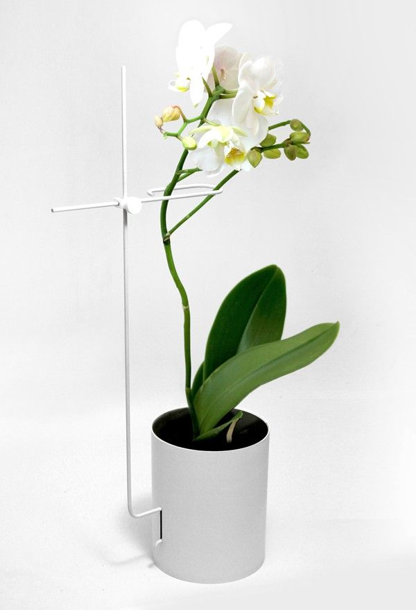 The World S Most Stylish Orchid Pot Gardenista Orchid Pot Orchid Planters Flower Planters