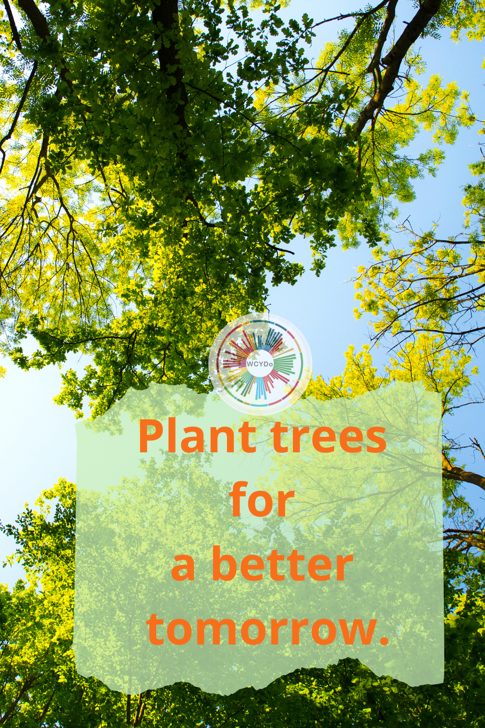 Plant trees for a better tomorrow! 🌳☘️🌲 in 2020 Trees