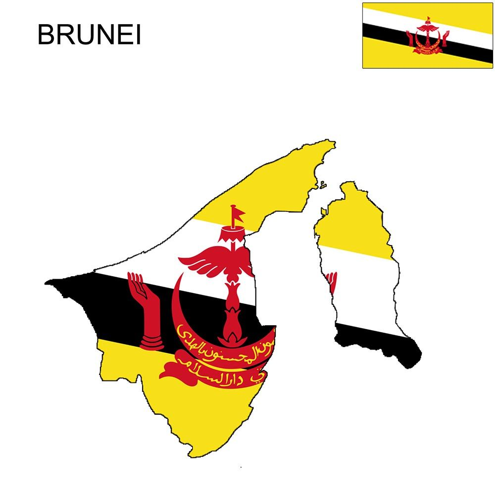 Colors And The Meaning Of The Brunei Flag The Flag Of Brunei Is Divided By A White Black Stripe Starting From The Top Of In 2021 Brunei Flag Flag Coloring Pages Flag