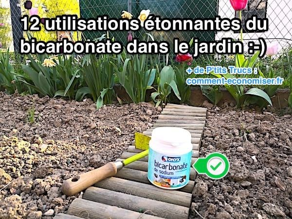 12 utilisations du bicarbonate dans le jardin que personne. Black Bedroom Furniture Sets. Home Design Ideas