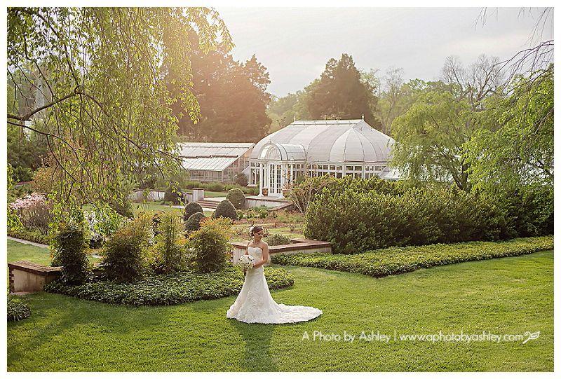 Reynolda Gardens Bridal Portrait | Winston Salem, NC Wedding Photographer |  Garden Bride