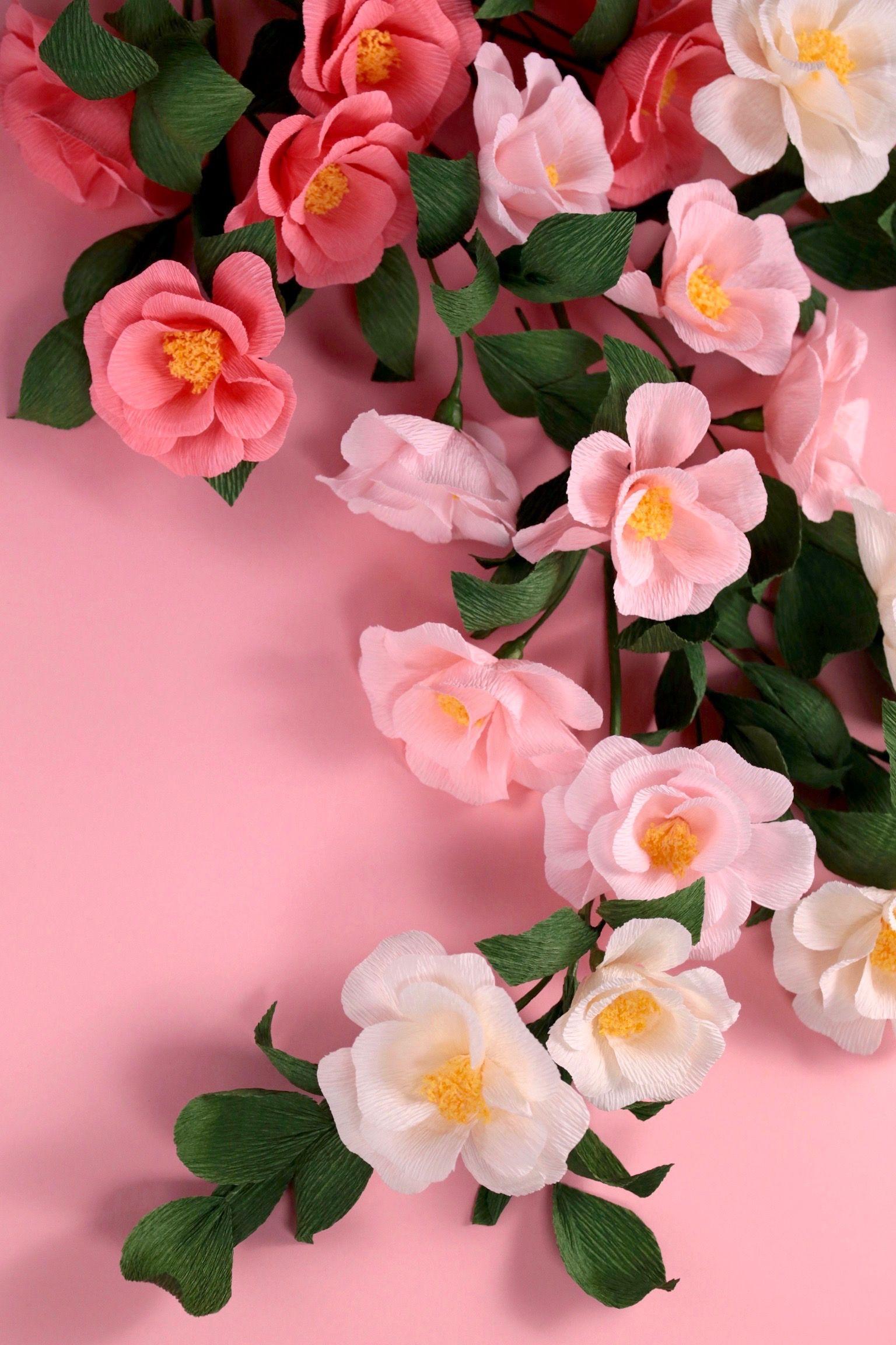 Diy Paper Camellia With Jennifer Tran Pinterest Camellia Diy
