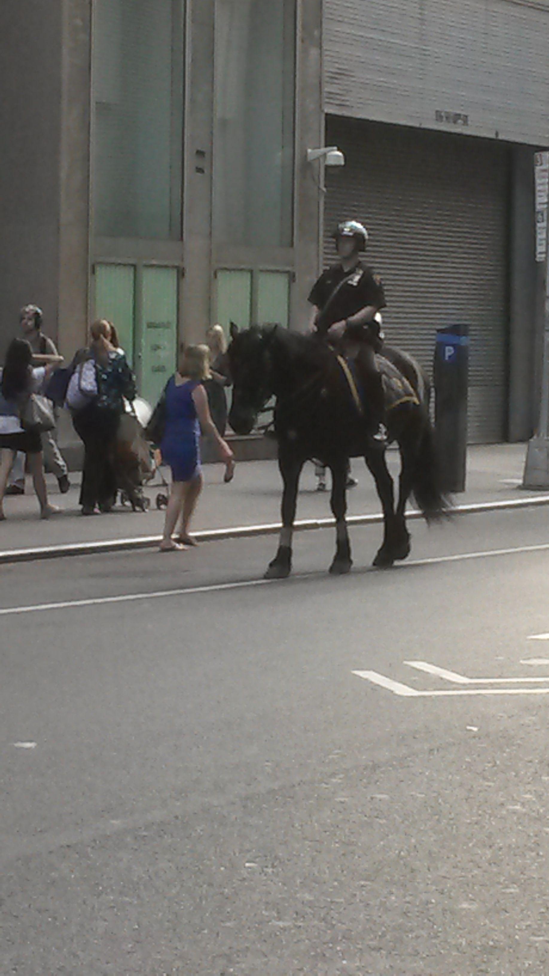 Poliziotto a cavallo