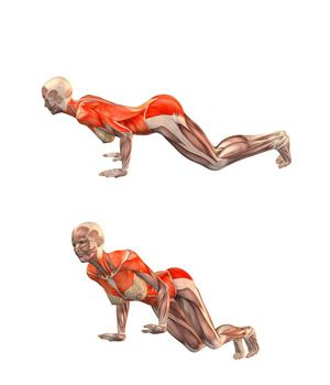 yoga exercises and workouts easy staff pose  yoga  Йога