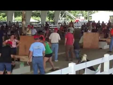 Kennebec River Block Sawing Contest ( Part-10 )        This is a one handed saw contest on woodsmen day at the fair.
