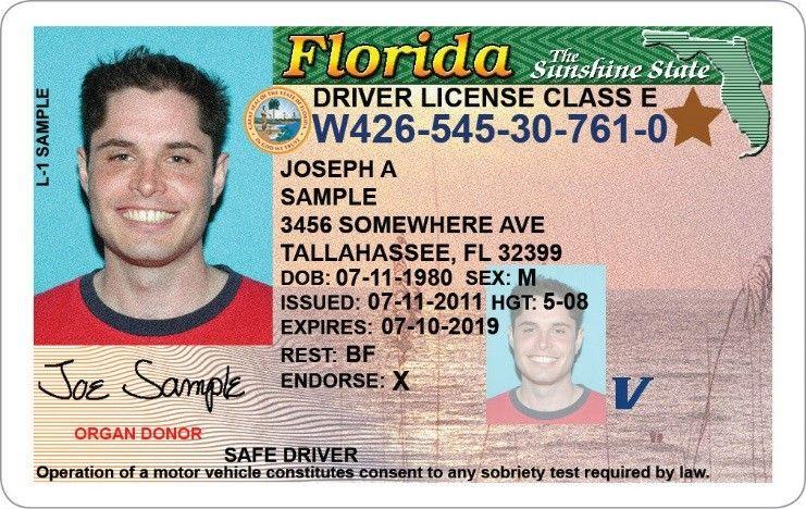 Florida Drivers License and Vehicle Registration Florida