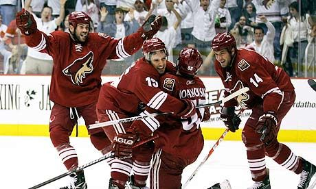 Phoenix Coyotes Favorite Sports Team Coyotes Hockey Phoenix