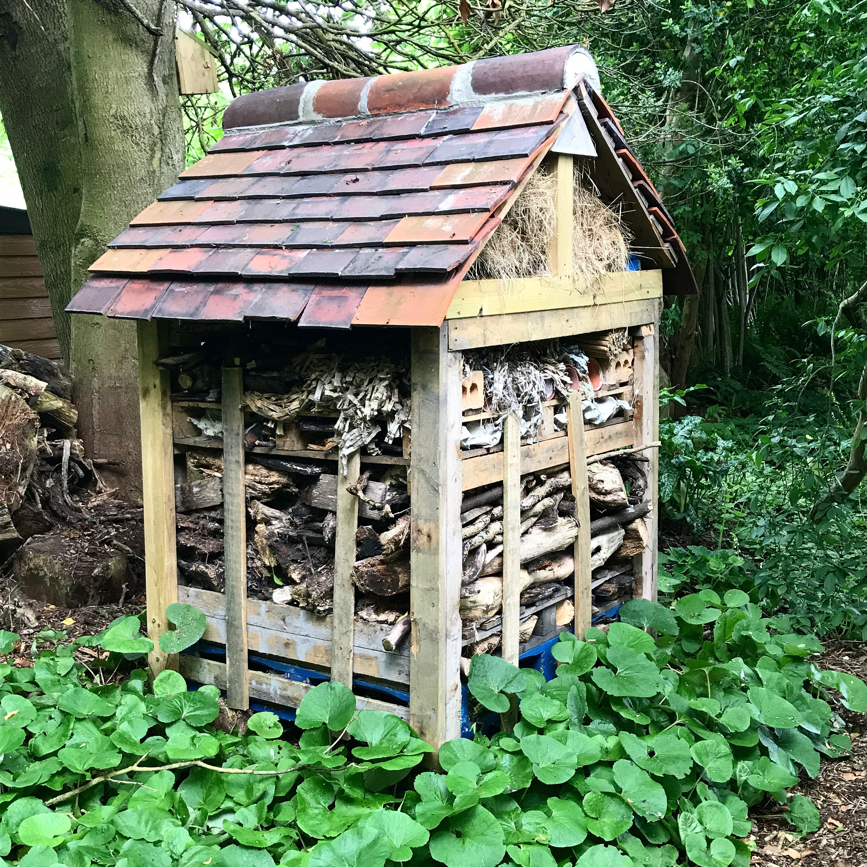 Bug hotel or insect house