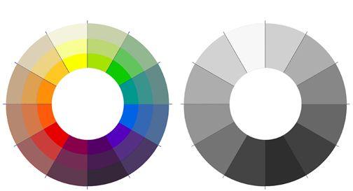 Grayscale Color Wheel Google Search Illustration Refs