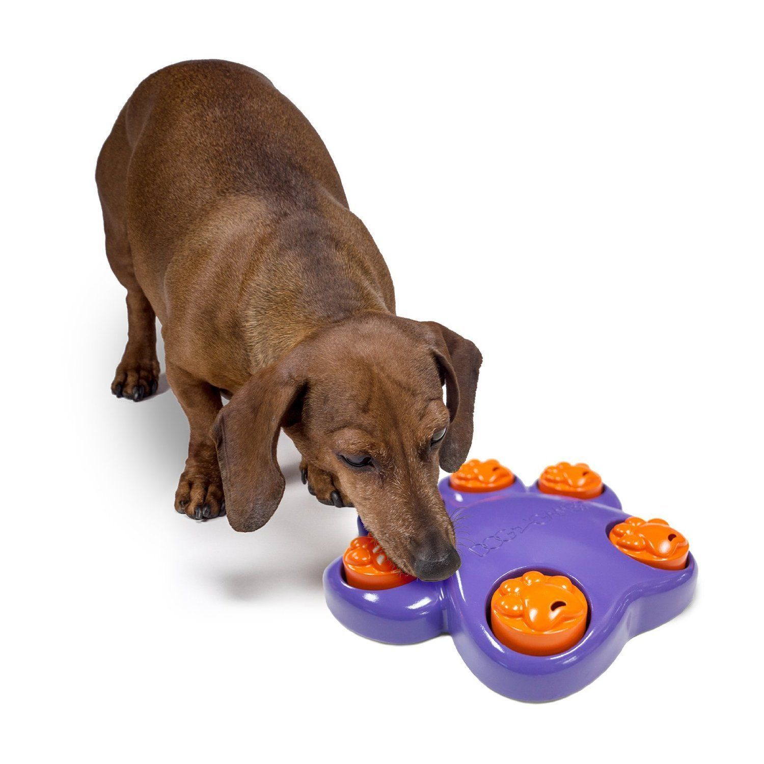 Kyjen Dog Games Mini Interactive Treat Hiding Puzzle Toy For Small
