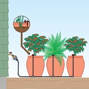 Drip Kits For Pots With Images Garden Watering System Plants