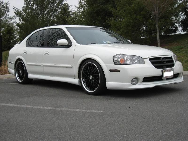 white 2003 nissan maxima with black rims 2003 nissan. Black Bedroom Furniture Sets. Home Design Ideas