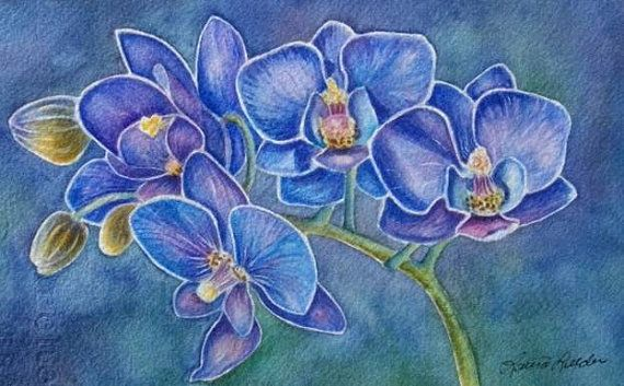 Blue Orchid Flower  Limited Edition Giclee by lauraleedersart, $65.00