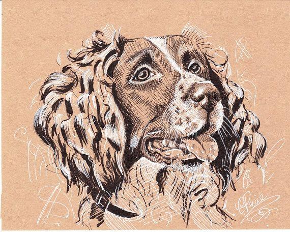 Springer Spaniel Original Drawing Pen Ink Tonal Study Pet Portraiture Springer Spaniel Dog Sculpture