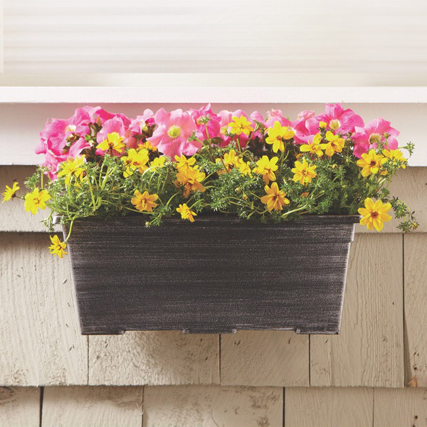 Window Boxes Container gardening flowers, Indoor flower