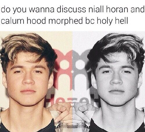 Niall Horan and Calum Hood morphed together ...