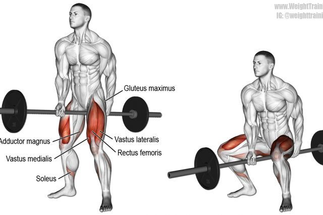 Best Lower Body Exercises Weight Training Guide Squat Workout Fitness Body Jefferson Squat