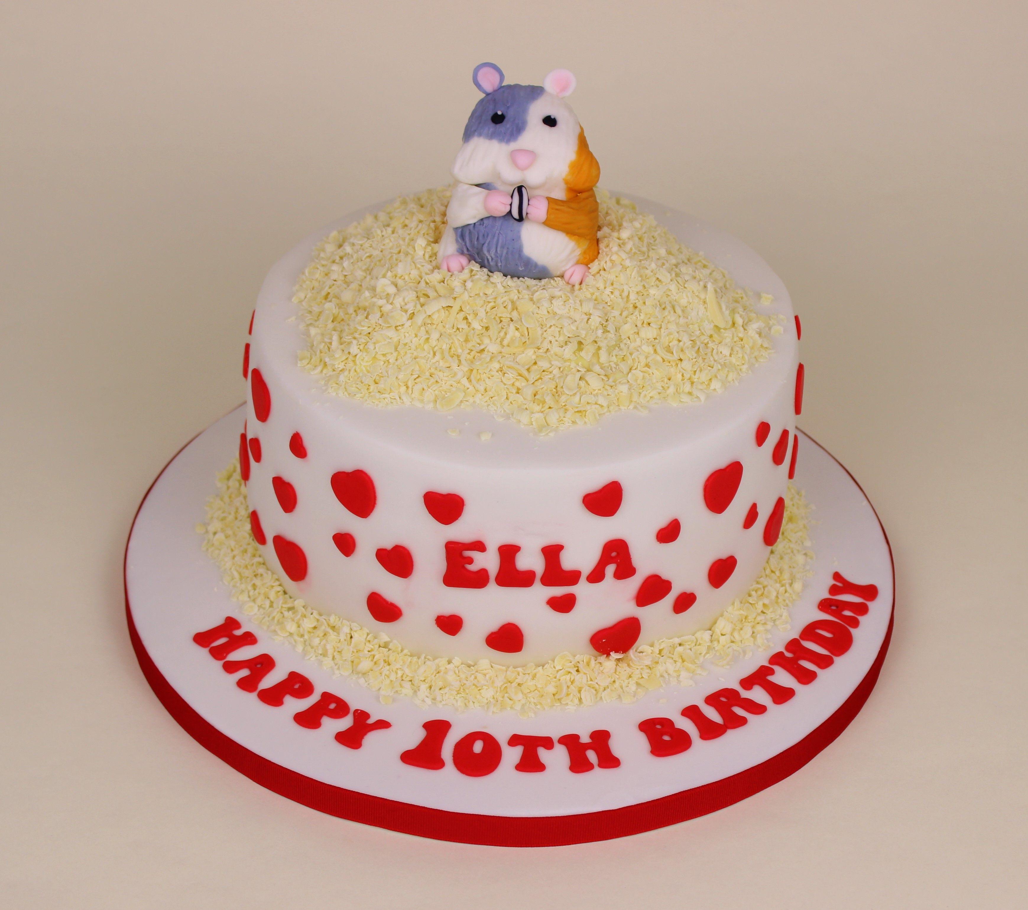 Hamster Cake Zachs Birthday Hamster Theme Pinterest - Hamster birthday cake