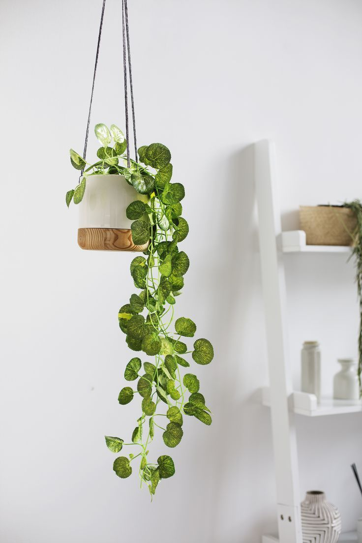 When In Doubt Fake It Fake Plants Decor Hanging Plants Indoor