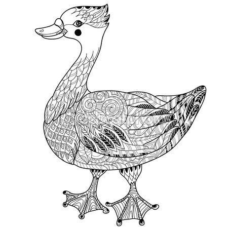 Doodle dibujado de la mano de ganso lindo. Colección del pájaro del ...
