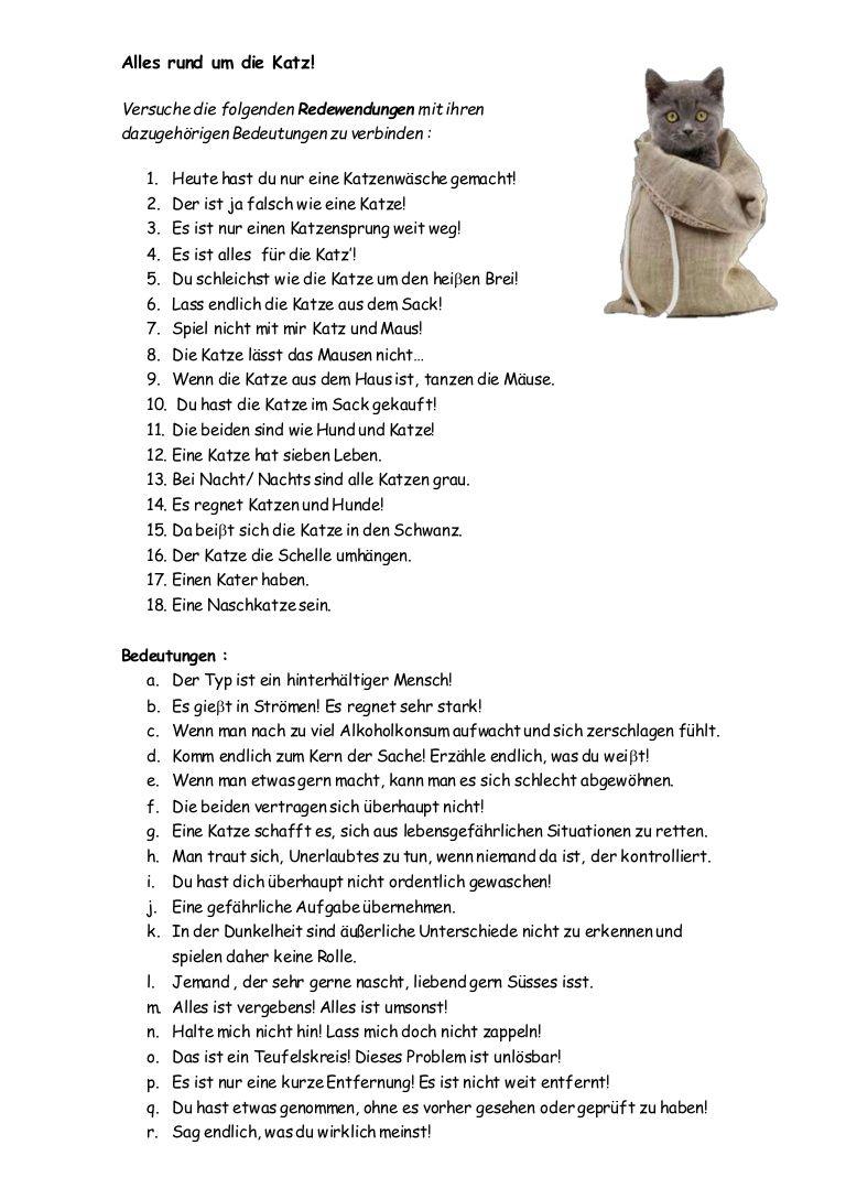 Alles rund um die Katz - Redewendungen und ihre Erklärungen ...