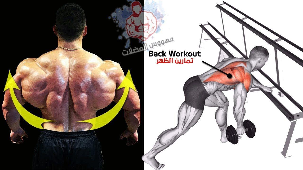 New Video By مهووس عضلات كمال الاجسام On Youtube عضلة الظهر تمارين الظهر تمارين عضلات الظهر كمال اجسام تعريض الظهر ت Back Workout Back Workout At Home Exercise