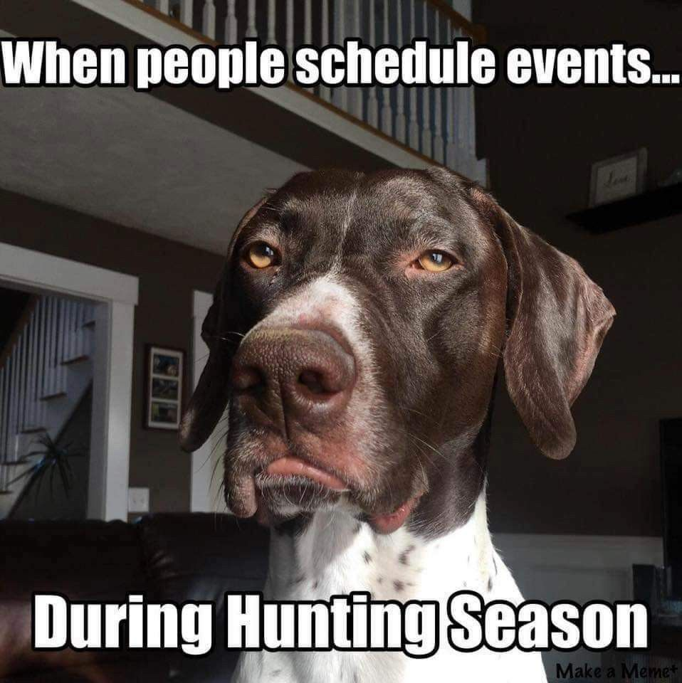 We Do Not Approve Hunting Humor Hunting Dogs Funny Deer