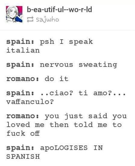 Xd Xd And He Says He Speaks Italian Maybe He Should Learn He Would Say Lo Siento Because That S Sorry In Spanish Hetalia Hetalia Funny Spamano