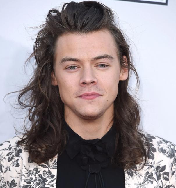Harry Style New Hairstyle New Hairstyle Harry Style New Hairstyle In 2020 Harry Styles Long Hair Long Hair Styles Harry Styles Hair