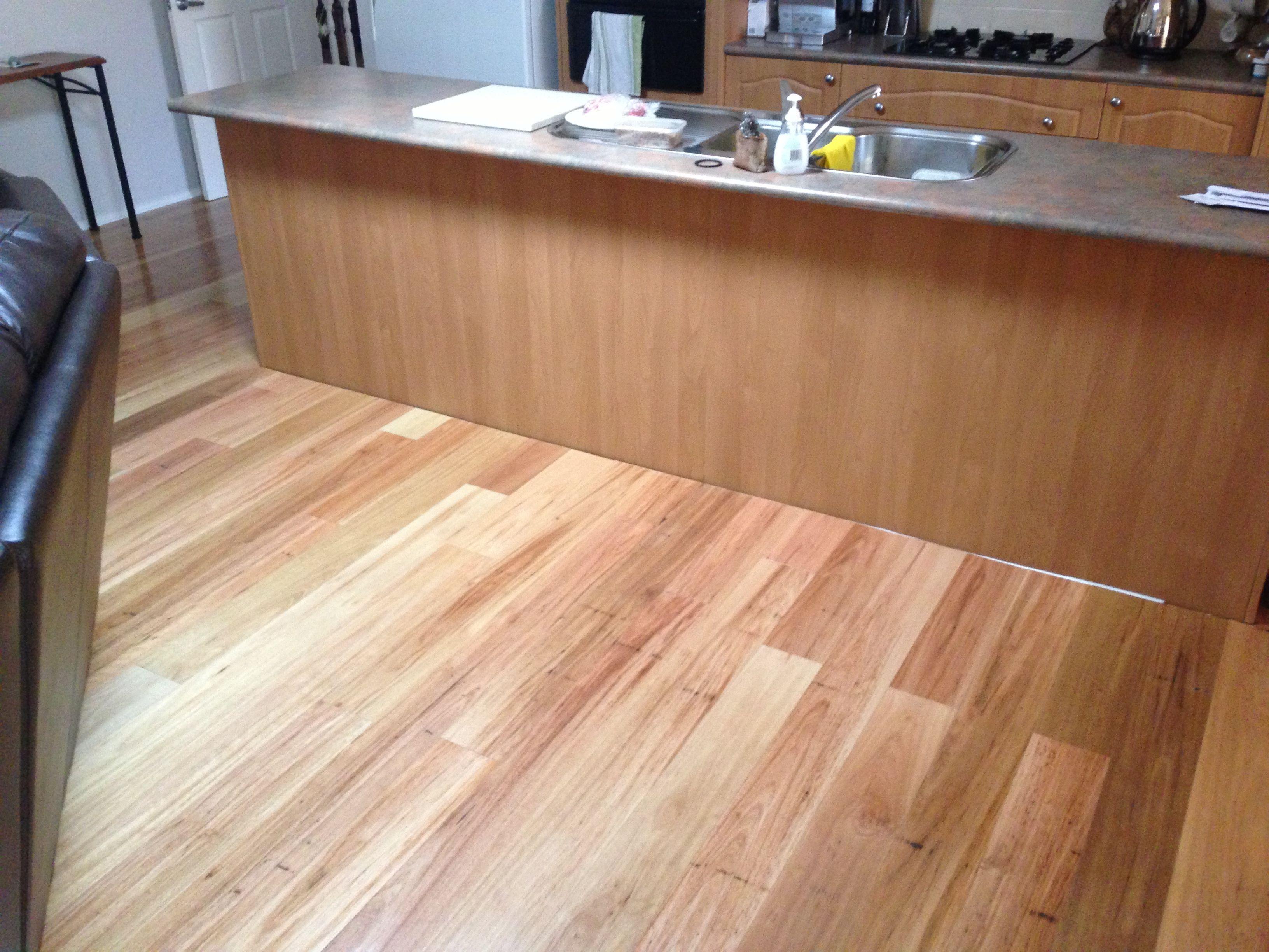 Timbermax timber flooring - Blackbutt  Timber flooring, Flooring
