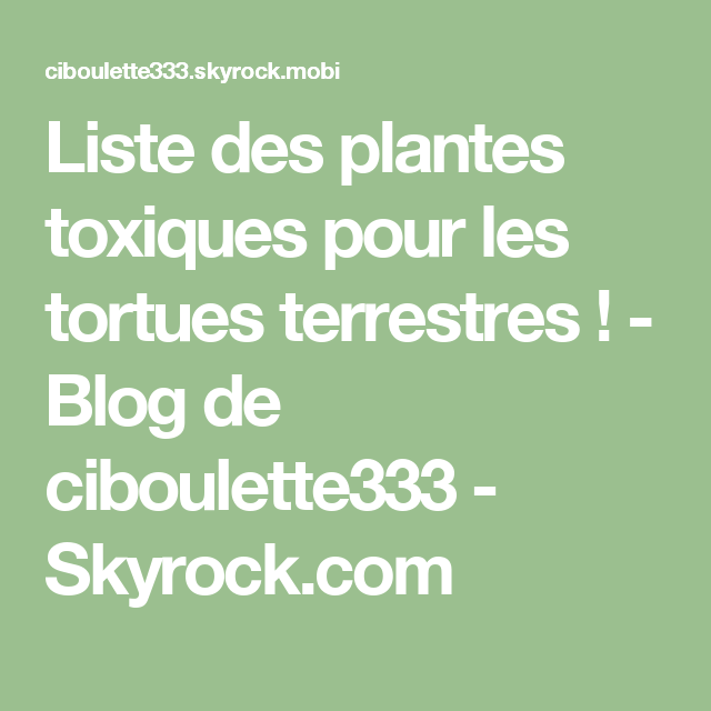 Liste des plantes toxiques pour les tortues terrestres blog de ciboulette333 - Le nom des tortue ninja ...