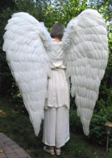 beth hansen models a pair of our huge white feather wings click on the photograph epic costumesangel costumeshalloween - Halloween Costumes Angel Wings