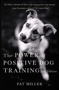 The Power Of Positive Dog Training Positive Dog Training Dog