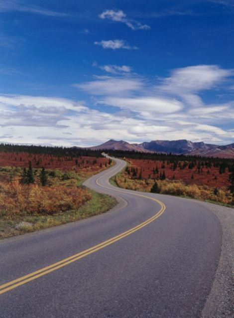 A Perfect Harley Davidson Bike Route The Road To Nowhere A