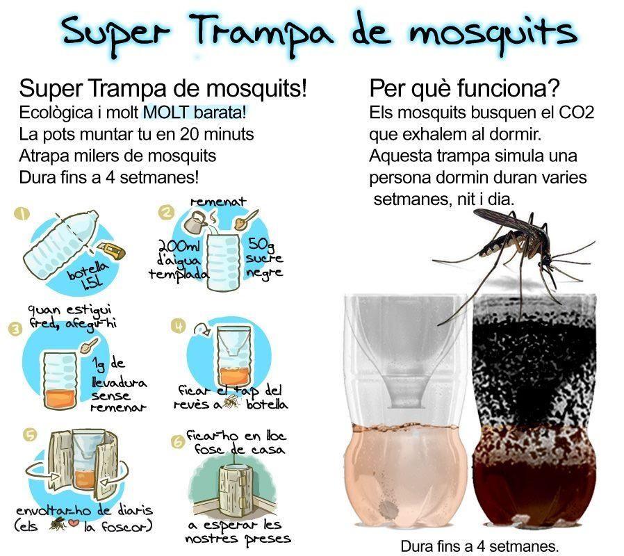 Como matar mosquitos! | D I C A S pra tudo ! | Pinterest | Dicas ...
