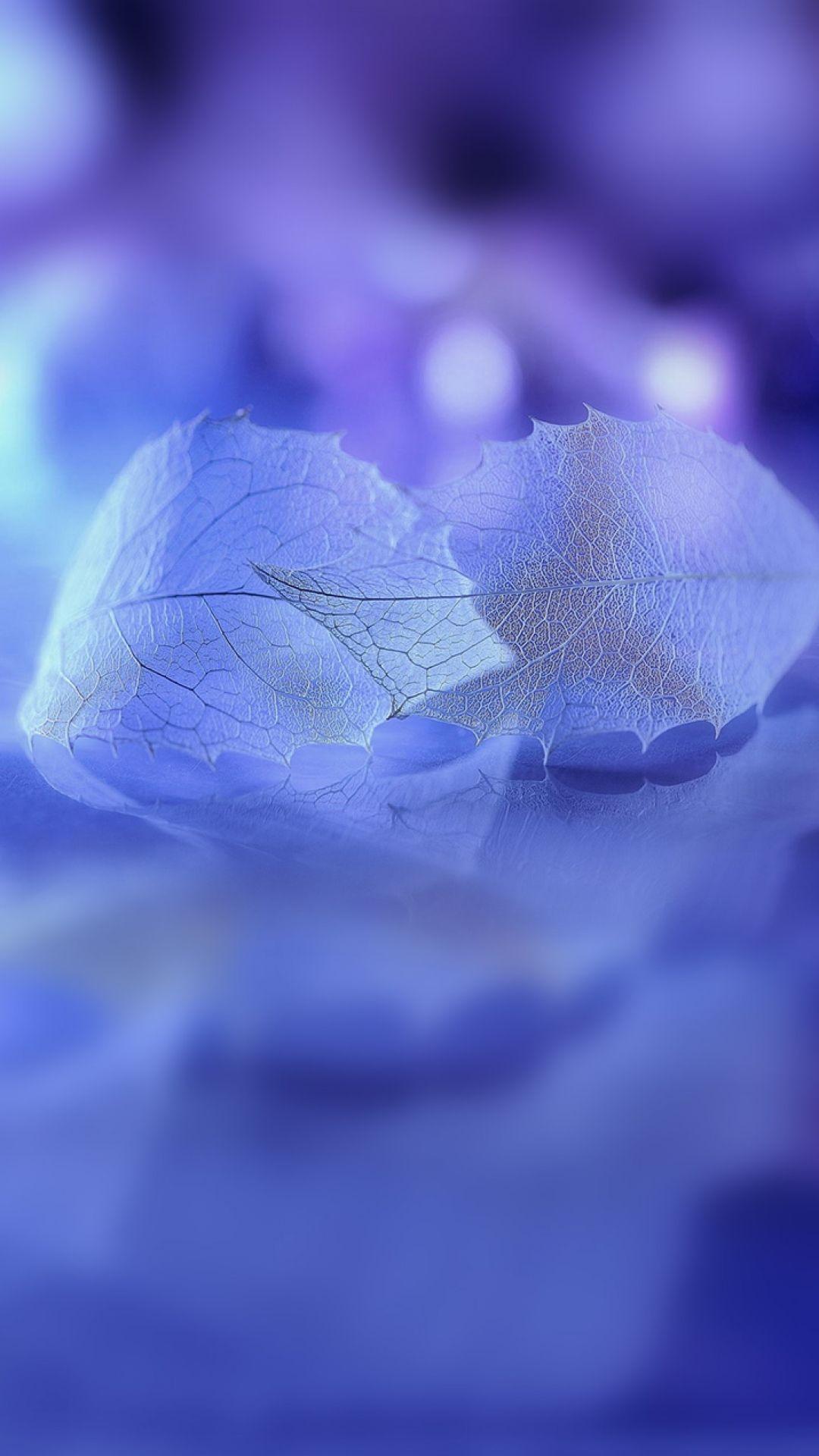 1080x1920 Background HD Wallpaper - 526 ...