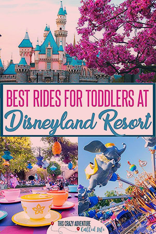 Photo of These are the best rides for toddlers at Disneyland