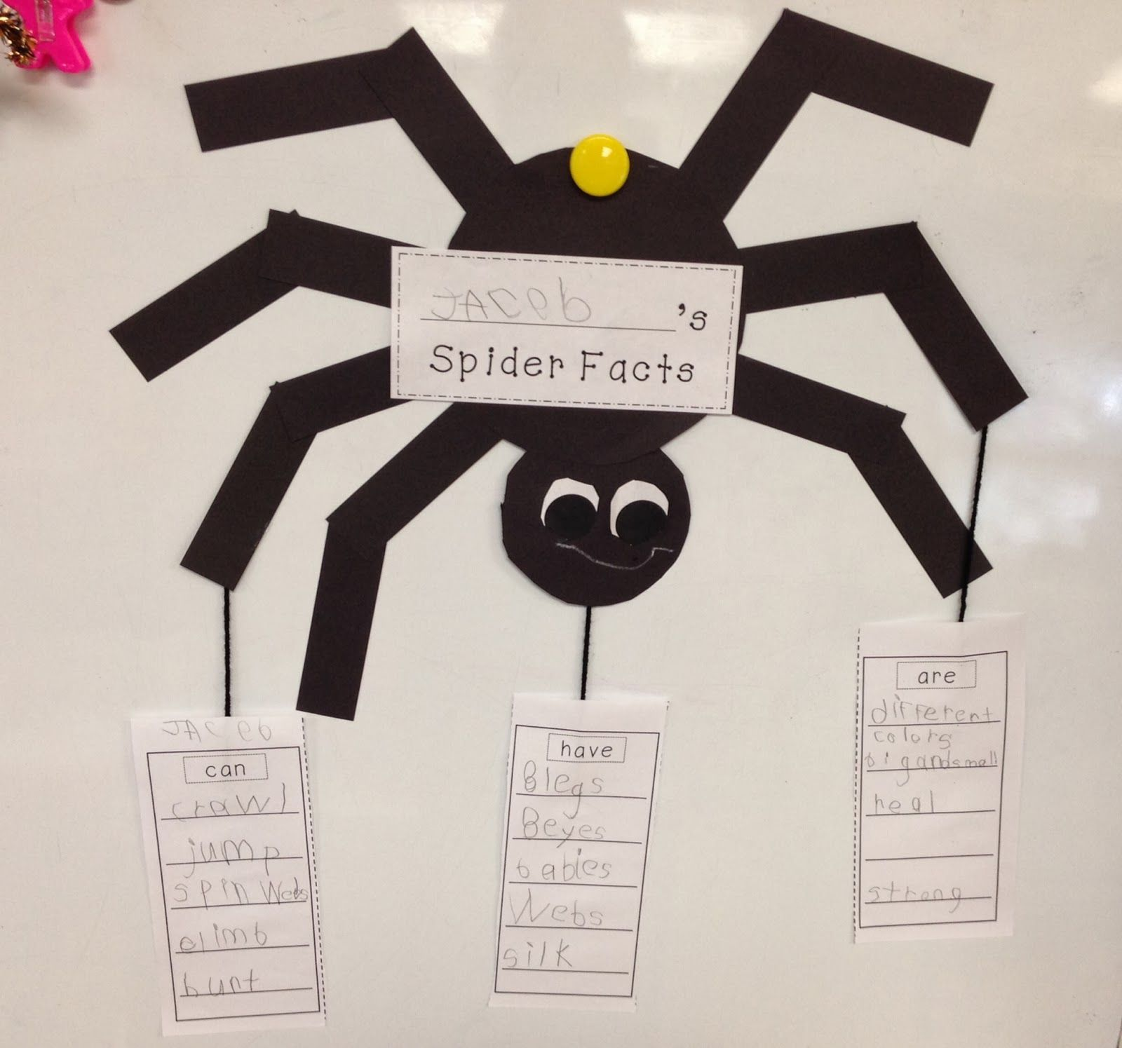 Spider Week!! The very busy spider, Spider lessons