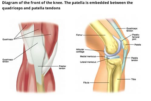 Pfj diagram knee exercises pinterest knee exercises knee pain exercises pfj diagram ccuart Image collections