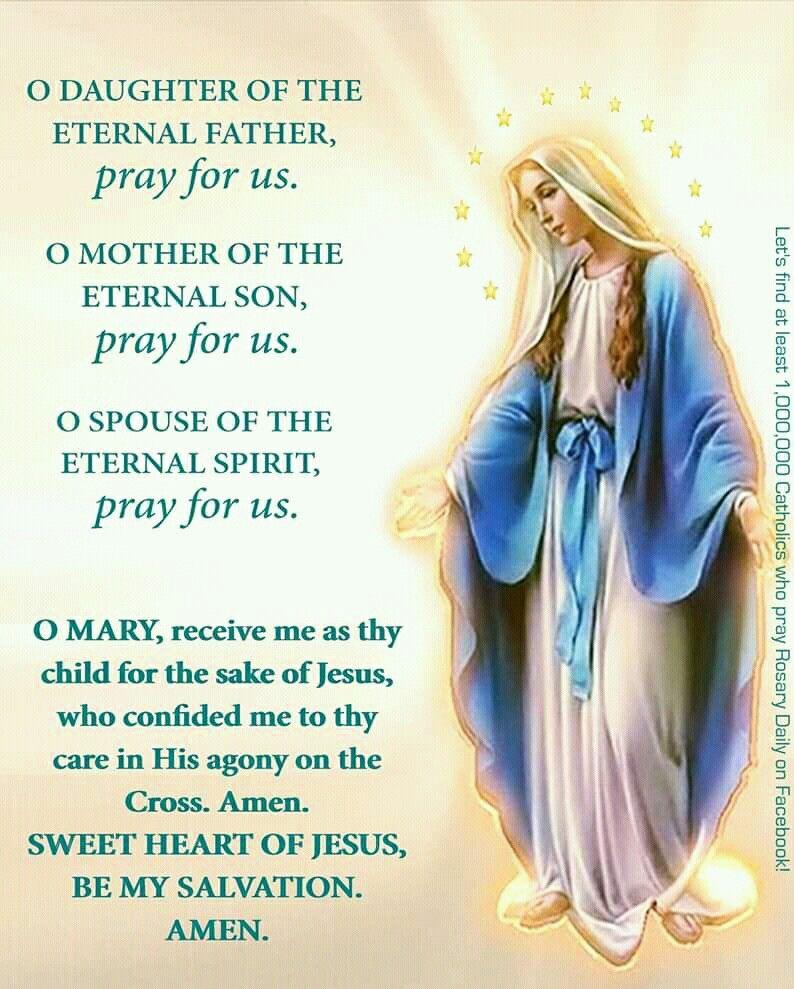 Pin By Diana On My Catholic Faith In 2020 Catholic Prayers Mother Mary Quotes Novenas Catholic